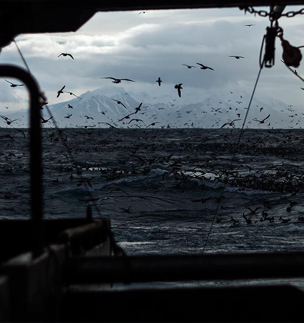 Как я бросил всё ради работы на морском судне — Герои на FURFUR
