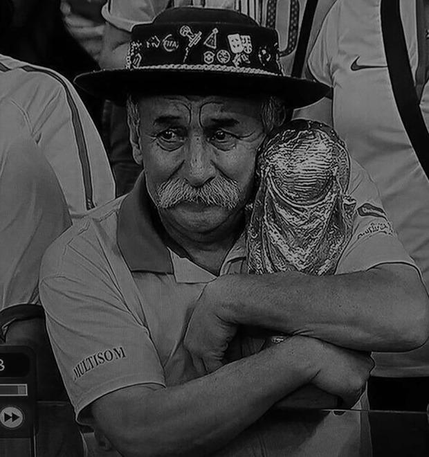 Как мир отреагировал на провал Бразилии