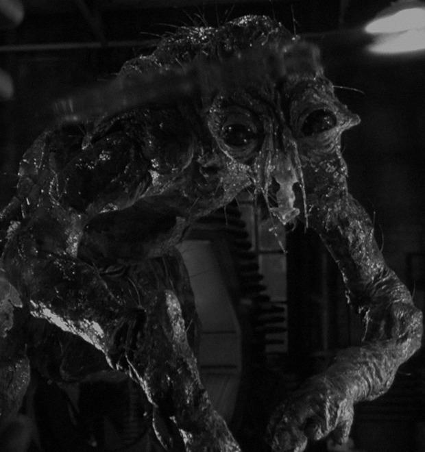 Новая плоть: 8 самых неприятных моментов из фильмов Дэвида Кроненберга — Культура на FURFUR