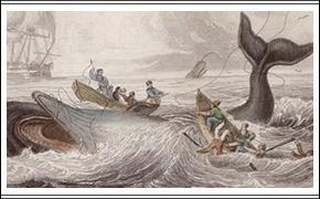 Рыбацкие байки: рецепты от матерых рыболовов
