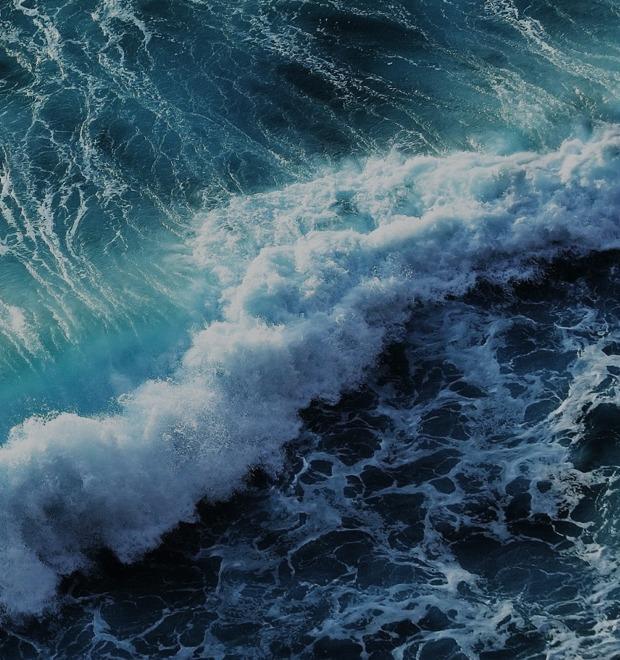 Бросить всё, чтобы поймать волну: Как русские открывают серф-школы на Бали