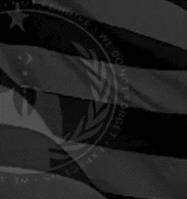 Как движение Anonymous подмочило свою репутацию на фоне беспорядков в Фергюсоне — Культура на FURFUR