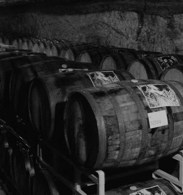 Золотая бочка: Всё о выдержанном пиве