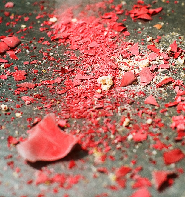 Эксперимент FURFUR: роза, сердце, яблоко и другие предметы в жидком азоте — Культура на FURFUR