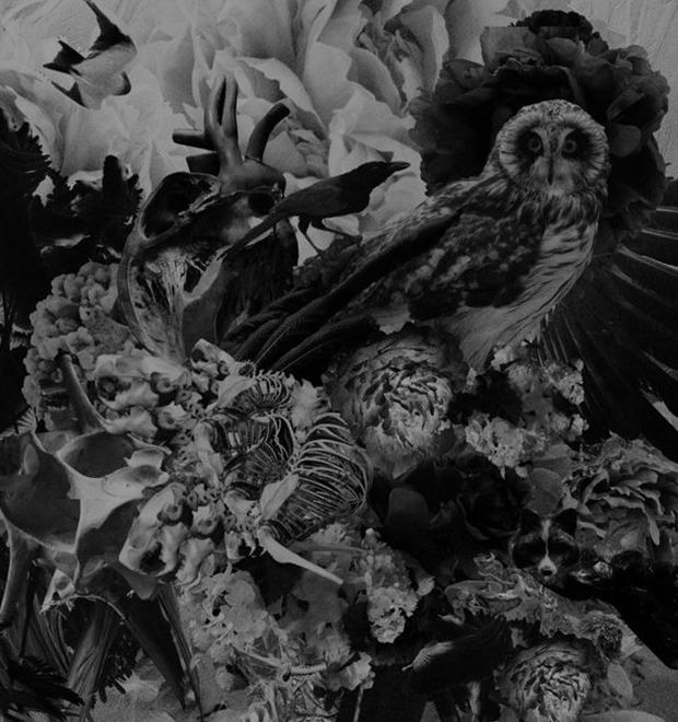 Муджус о своей персональной выставке «Метаморфозы» и мультимедийном искусстве — Герои на FURFUR