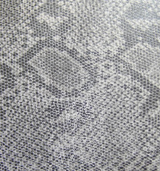 Бросок кобры: Как уличные и спортивные марки отреагировали на год Змеи — Культура на FURFUR