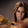В США алкоголь на дом стали доставлять полуобнажённые модели