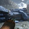 На Kickstarter собрали деньги на симулятор медведя