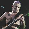 Басист RHCP Фли объявил о скором выходе сольного релиза
