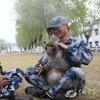Китайские ВВС взяли на службу взвод обезьян