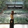 Вышел трейлер документального фильма про японских лучников