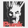 Вышла книга «Punk: An Aesthetic», посвященная визуальной составляющей панк-культуры