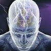 Учёные научились улучшать память с помощью магнитной стимуляции