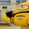 Граффити-команда Os Gêmeos разрисовала самолёт в преддверии чемпионата мира по футболу