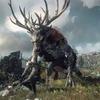 Вышел новый трейлер к игре The Witcher 3: Wild Hunt