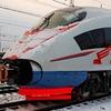 Москвичи добрались до Санкт-Петербурга на крыше скоростного поезда «Сапсан»