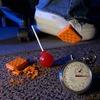Найдено научное обоснование «правилу 5 секунд» об упавшей на пол еде