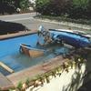 Немецкая полиция задержала пьяного водителя в бассейне на колесах