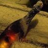 В Дании сварили 3300-летнее пиво