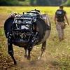 Четвероногого робота Alpha Dog протестировали морпехи США