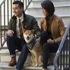 В сети появился фильм о собаке из блога Menswear Dog