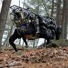 DARPA потратили 10 миллионов долларов на усовершенствование робота-мула