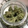 Диктатура тетрагидроканнабинола: Как в Уругвае и США легализовали марихуану
