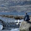 «Левиафан» Андрея Звягинцева очистят от мата