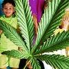 Детская футбольная команды из Парагвая везла в Чили 400 кг марихуаны