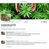 В Канаде появился марихуановый Робин Гуд