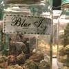 Новый сорт марихуаны назвали в честь дочери Бейонсе и Джей Зи