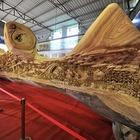 Китайский мастер попал в «Книгу рекордов Гиннесса» за самую длинную скульптуру из дерева