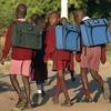 В Зимбабве закрыли школы из-за нападения гоблинов