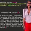 В сети появился ресурс, обучающий программированию при помощи стриптиза учительниц