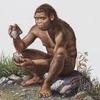 Археологи нашли древнейший наскальный рисунок пениса