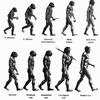 Ученые нашли новый вид в родословной человека