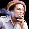 Боба Марли сделают символом первого официального бренда марихуаны