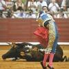 «Бык может отнять у тореро жизнь, но не славу»: Кодекс чести матадоров