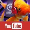 Канадские рыбки третьи сутки играют в Street Fighter II