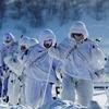 В российской армии впервые появится отряд арктических мотострелков