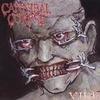 Челябинские пенсионерки одержали победу над Cannibal Corpse