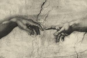 Воскресное чтение: Зоолог Франс де Валь о происхождении религии и суеверий