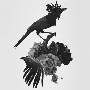 Муджус о своей персональной выставке «Метаморфозы» и мультимедийном искусстве