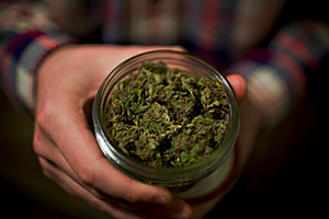 Почему мировые лидеры хотят отказаться от борьбы с наркотиками