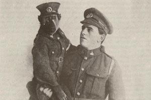 Как обезьяна-капрал, медвежонок-рядовой и другие животные помогали солдатам на войне