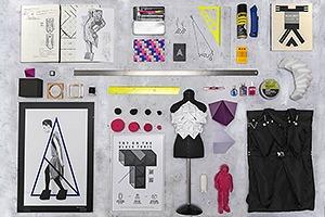 Личный состав: Предметы дизайнера и художника Лизы Шахно