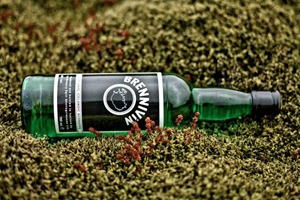 «Черная смерть»: Гид по бреннивину, национальному напитку Исландии