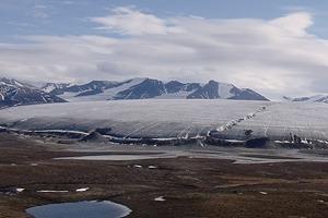«Были только мы, олени, опять олени и рыба»: 7 дней английского телеведущего на Ямале