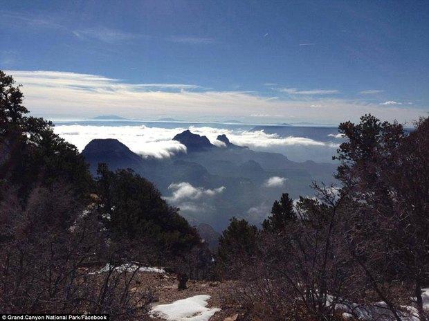 В Большом каньоне впервые за 10 лет появился туман. Изображение № 1.
