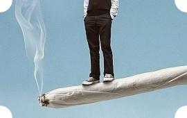 Там за туманами: 40 фильмов и 40 альбомов ко всемирному дню свободы марихуаны. Изображение №67.